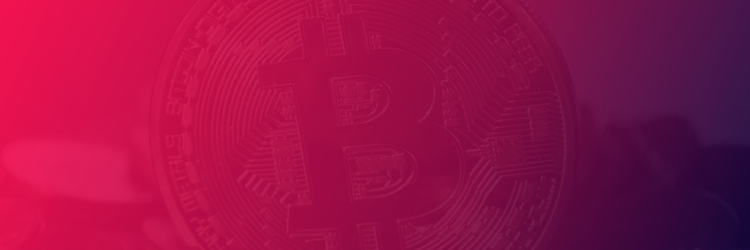 How can I accept Bitcoin through my WordPress website?