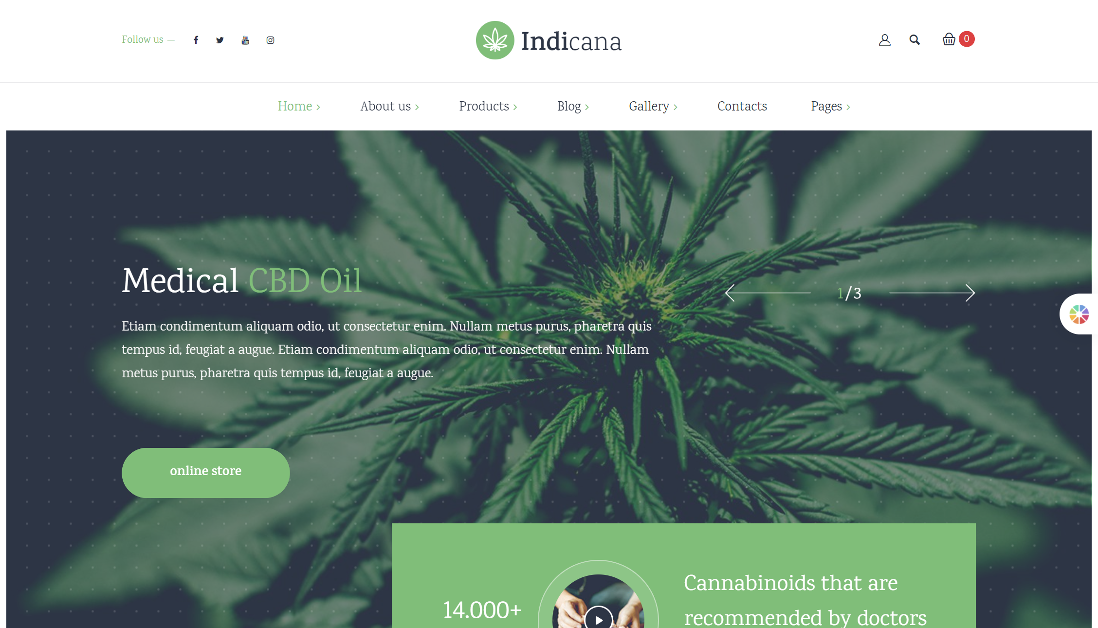 Best CBD and Cannabis WordPress Theme