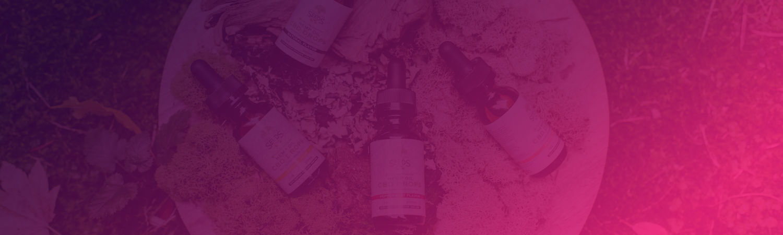 SEO Case Study – The CBD Supplier
